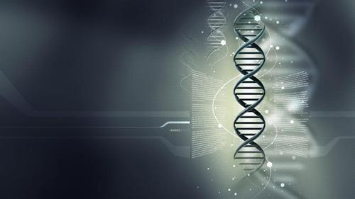 DNAの螺旋