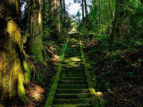 虫の声が聞こえる日本の田舎の風景