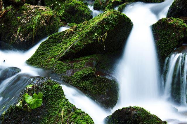 滝の音を連想させる滝壺の画像2