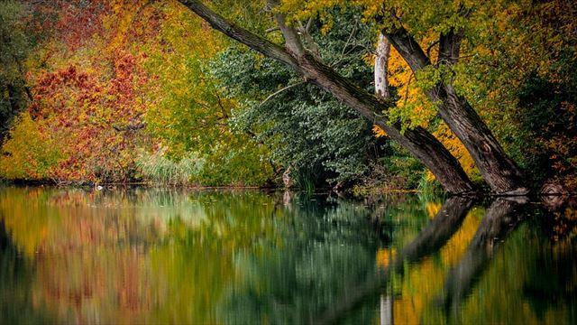 自然音の聞こえる風景画像1