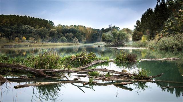 自然音の聞こえる風景画像2
